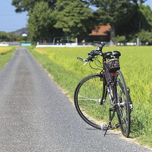 岡山満喫サイクリングロード